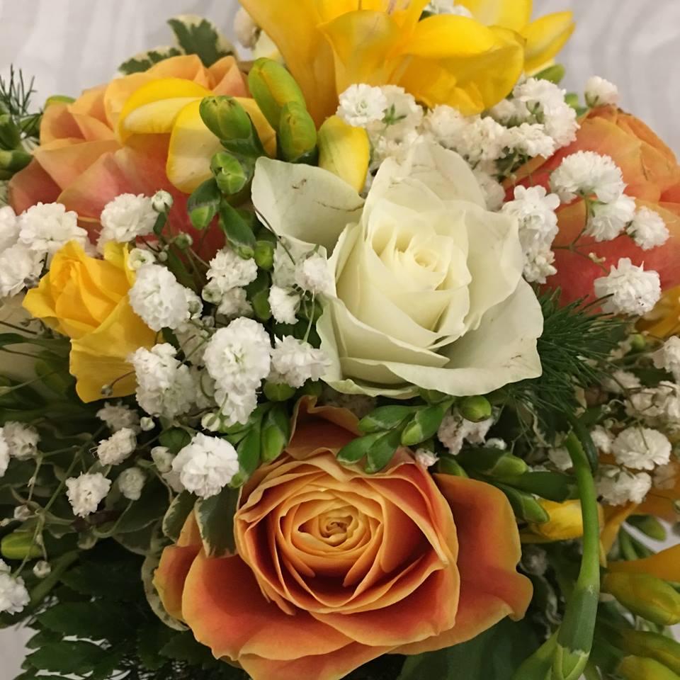 fiori colorati